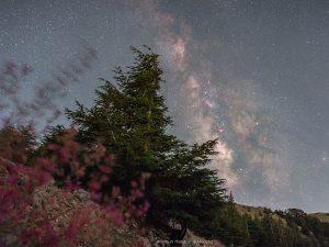 Barouk - Milky way - Maroun habib
