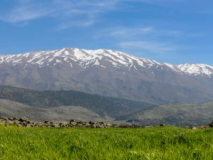 Mount Hermon (from West Bekaa) - Spyro Klitira
