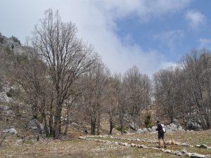 Jabal Moussa hiking