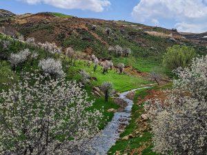 take a quiet walk with mother nature it will nurture your mind, body & soul - Spyro Klitira