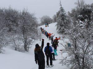 Winter - snowshoeing