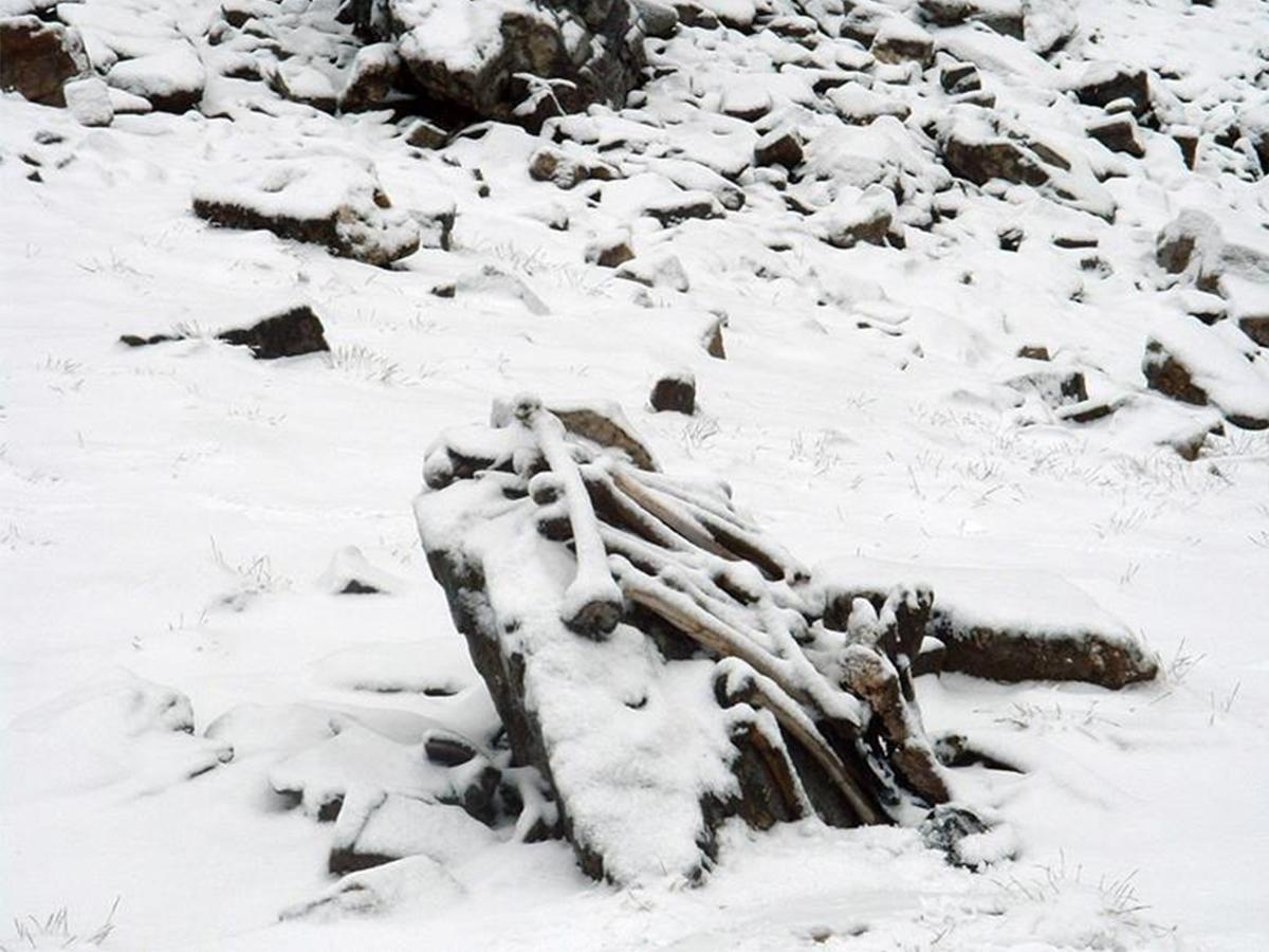 Snow covered skeletal elements at Roopkund Lake - Image Credit: Pramod Joglekar
