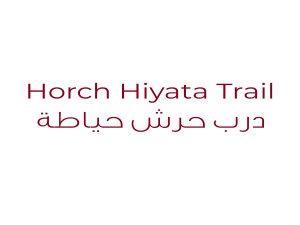 Horch Hiyata